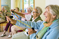 Elderly ladies exercising in a gym.